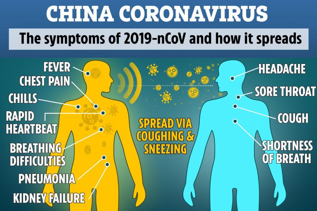 what coronavirus does to the body